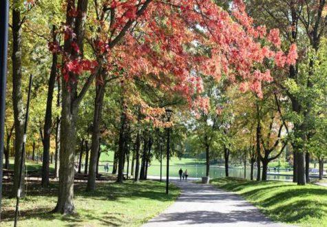 Lac aux castors Montréal